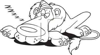 Royalty Free Clipart Image of a Sleeping Lion
