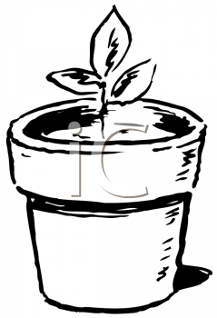 Royalty Free Clipart Image of a Potted Plant
