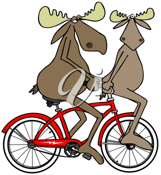Royalty Free Clipart Image of a Moose Riding Another Moose on the Handlebars of a Bike
