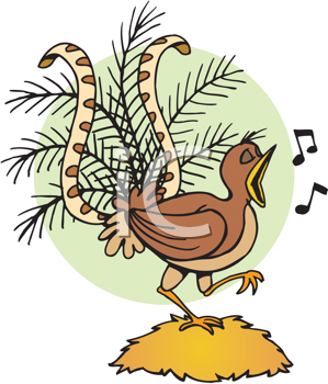 Royalty Free Clipart Image of a Singing Bird