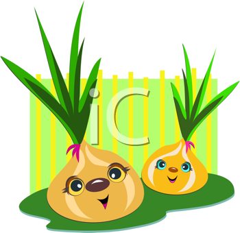 Royalty Free Clipart Image of Onions