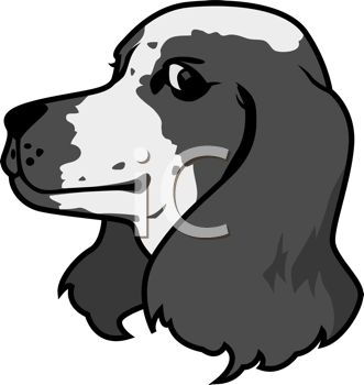 Royalty Free Clipart Image of a Spaniel