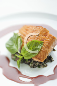Royalty Free Photo of a Gourmet Salmon Meal With Professional Presentation