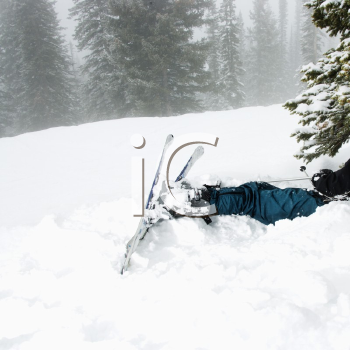 Royalty Free Photo of Skiers Lying in Snow Near a Tree after a Crash in the Fog