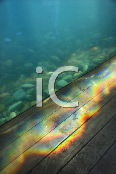 Royalty Free Photo of an Aquarium With a Rainbow Pattern of Light Passing Through Water Onto Wood Paneling