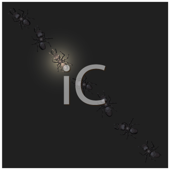 Royalty Free Clipart Image of Glowing Worker Ants in a Row