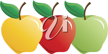 Clip art illustration of a group of three different types of apples.