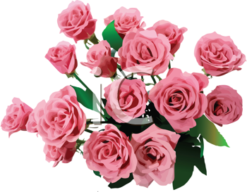Royalty Free Clipart Image of a Bouquet of Pink Roses