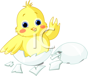 Royalty Free Clipart Image of a Hatched Chick