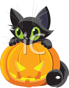 A cute black cat on a Halloween pumpkin.