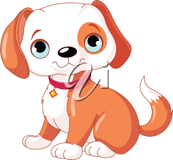 Cute puppy, wearing a red collar with a dog tag.