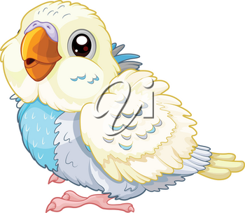 Illustration of cute baby parakeet