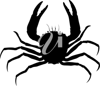 Crab silhouette, isolated object on white