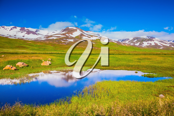 Summer Iceland. Blue lake water reflects the snowy hills. The fields overgrown with fresh green grass
