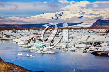Snow-capped mountains surround the Ice Lagoon. Ice floes are reflected in the smooth water surface. The concept of extreme northern tourism