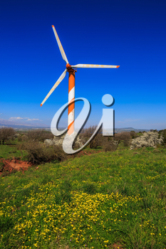 Flowers to the Golan heights in spring day. Huge modern windmill