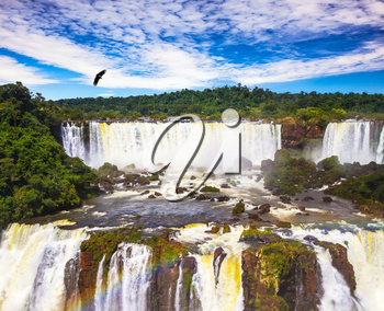 Grandiose waterfalls Iguazu in South America, on the border of three countries: Brazil, Argentina and Paraguay. Andean condors fly in the water dust. Concept of active and extreme tourism
