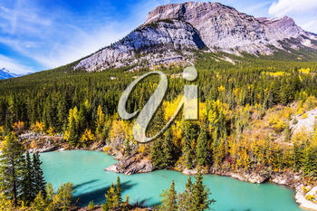 Indian summer in Canada, warm sunny day in autumn. Dense forests cover the lake shores. Abraham Lake is the most beautiful lake in the Rockies. The concept of ecological and active tourism