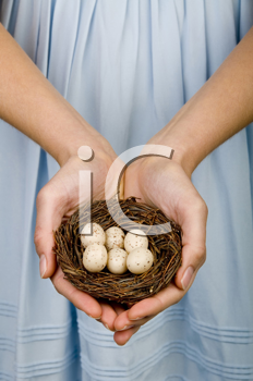Royalty Free Photo of a Woman Holding a Nest of Eggs