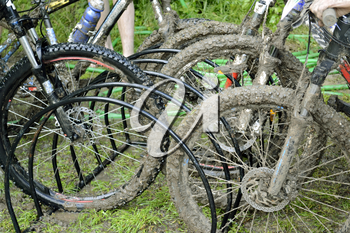 Dirty bicycles after riding in bad weather