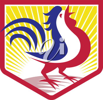 Illustration of a rooster cockerel crowing facing side set inside crest shield with sunburst done in retro style