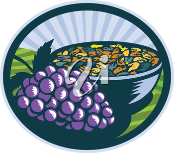 Illustration of a bunch of grapes and raisins in a bowl set inside oval shape with sunburst in the background done in retro woodcut style.
