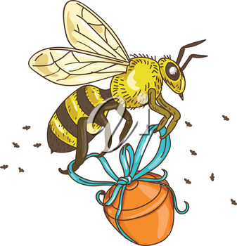 Drawing sketch style illustration of a worker honey bee carrying a honey pot with ribbon viewed from the side set on isolated white background.