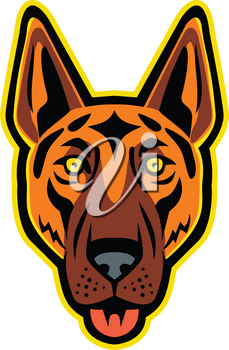 Mascot icon illustration of head of a German Shepherd Dog, Alsatian wolf dog, Berger Allemand, or Deutscher Schaferhund with tongue out viewed from front on isolated background in retro style.