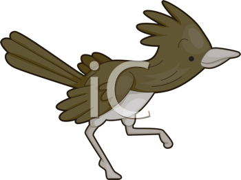 Royalty Free Clipart Image of a Roadrunner