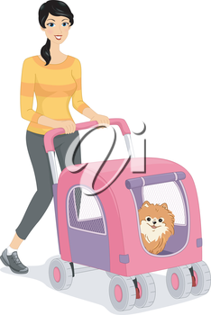Illustration of a Woman Walking Her Dog in a Stroller