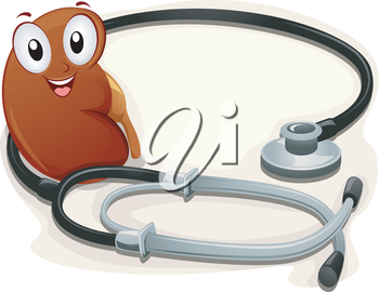 Illustration of a Kidney Siting Beside a Stethoscope