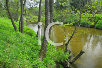 Royalty Free Photo of a River and Forest