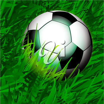 Close Up Soccer Over Spring Green Grass