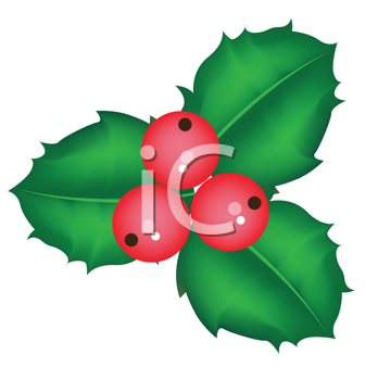 Royalty Free Clipart Image of Holly