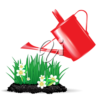 red watering can and flowers isolated