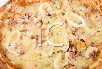 Royalty Free Photo of a Seafood Pizza