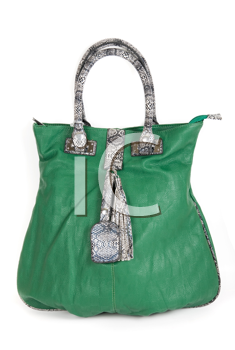 Royalty Free Photo of a Green Purse