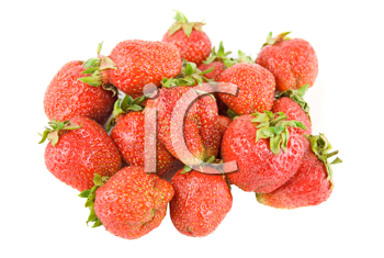 red ripe strawberries isolated on white background