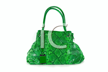 green women bag, fashion of 2011 year isolated on white background