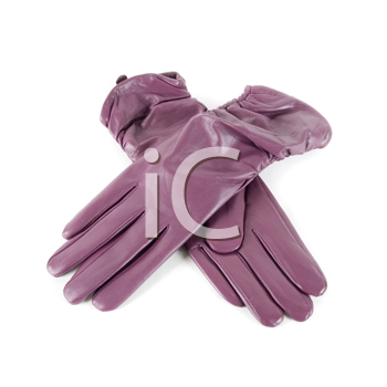 Purple modern female leather gloves isolated on a white