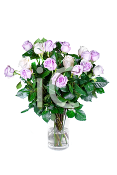 Bouquet pink roses in vase isolated on a white