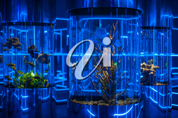 Interior photo in the oceanarium