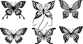 Beautiful butterflies in monochrome style for tattoo design