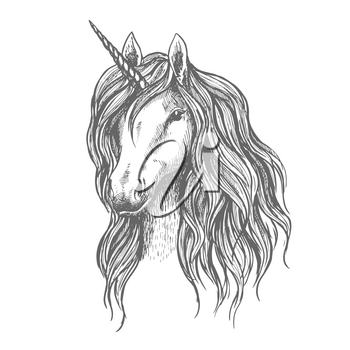 Unicorn vector sketch. Vector sign of mythical horse head with horn, wavy mane for sport badge, heraldic tattoo