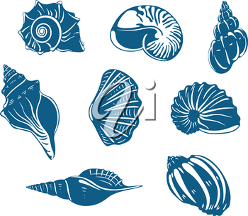 Blue shells and mussels set isolated on white background
