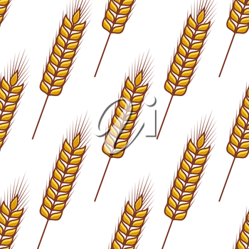 Seamless pattern of ripe ears of golden wheat orientated diagonally on a white background in square format
