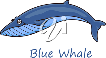 Funny cute cartoon blue whale isolated on white background for nautical, wildlife and ecology design