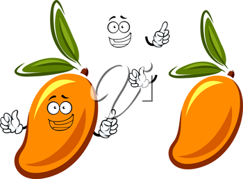 Funny cartoon orange mango fruit character with narrow dark green leaves isolated on white background, for menu or tropical dessert design