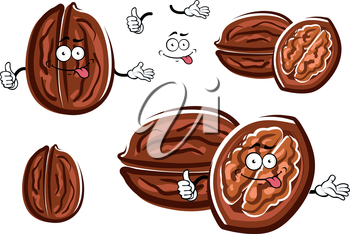 Funny whole and opened walnut cartoon characters with brown wrinkly nutshell and tasty kernel