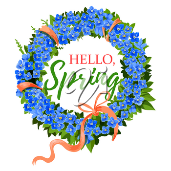 Hello Spring greeting card of crocus blue flowers wreath and pink springtime ribbon. Vector design of floral bunch bouquet element for spring holiday